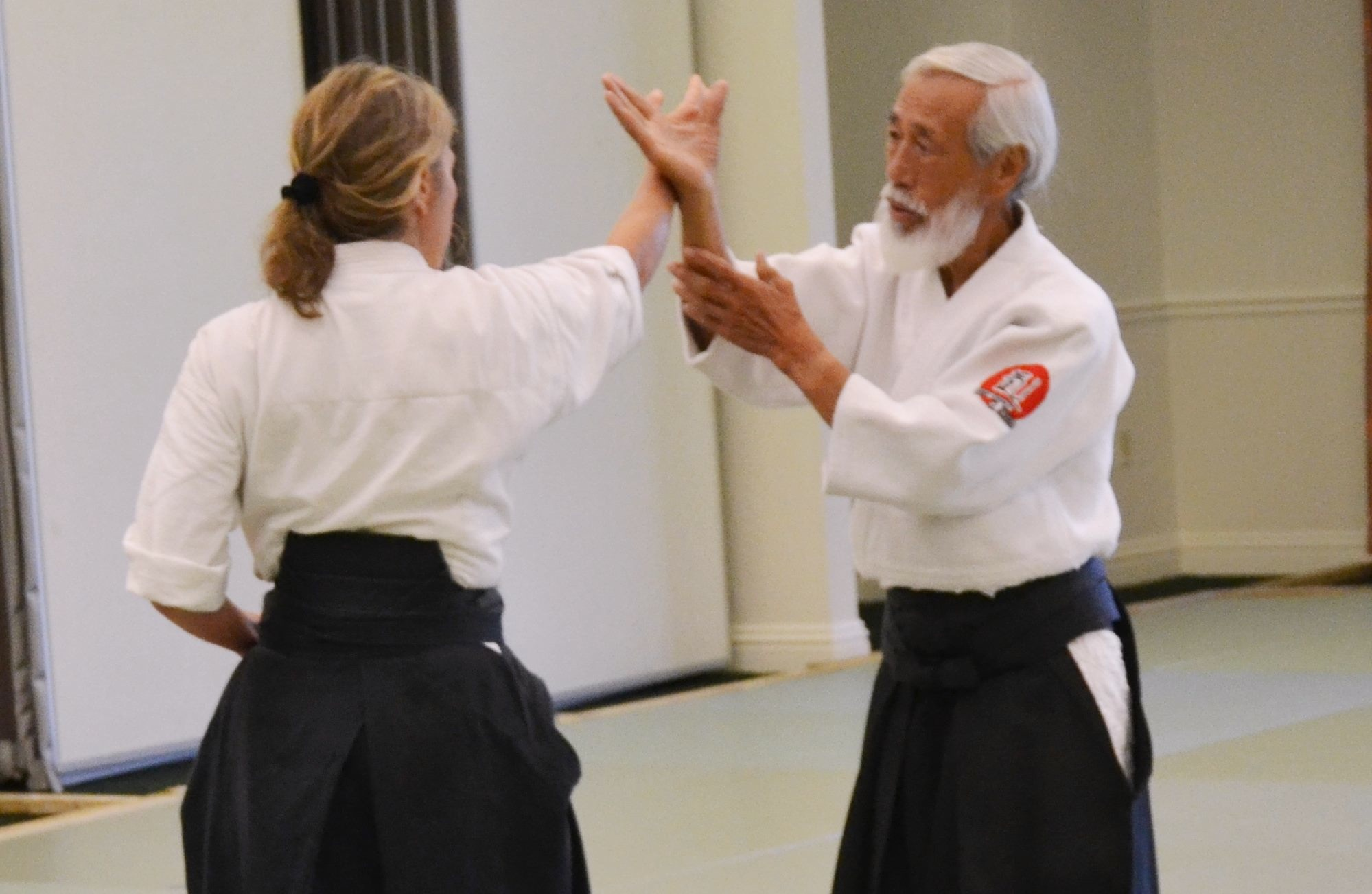 Aikido is a Japanese martial art. Aikido: description, technique and reviews 12